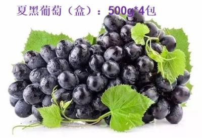 大理弥渡夏黑葡萄预售(4盒*500g),7月1日发货恢复原价